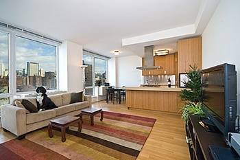 The Caledonia NYC On The Highline Park West Chelsea One BR W Dramatic City  U0026 River Views